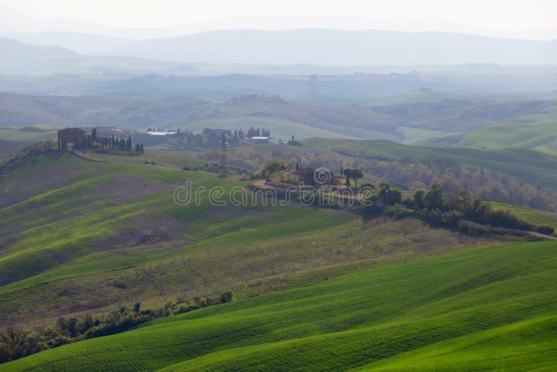 Typisk Tuscan landskap - gröna vågor royaltyfri fotografi