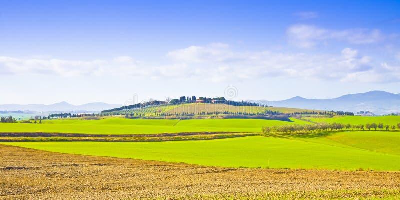 Typisk tuscan landskap Italien - Pisa royaltyfria bilder