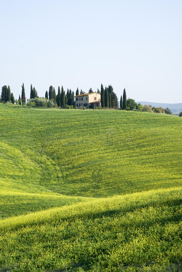 Typisk tuscan liggande royaltyfri fotografi