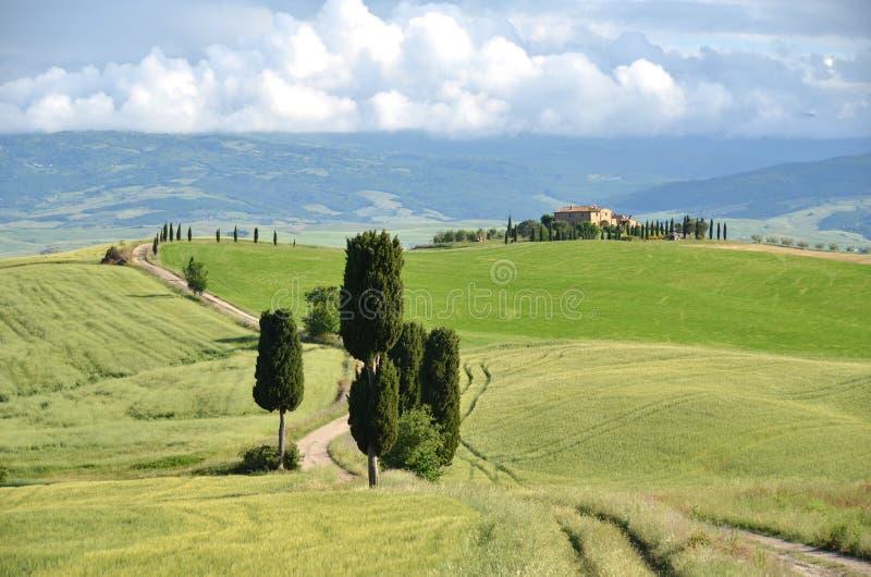 Typisk tuscan liggande italy arkivfoton