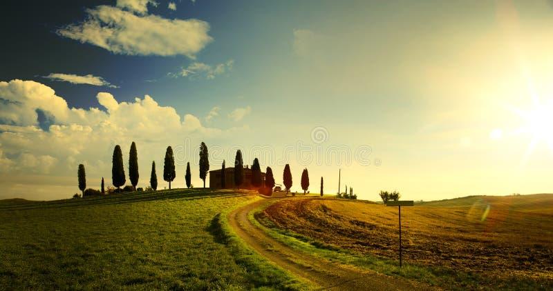 Typisk Tuscany bygdlandskap; solnedgång över Rolling Hills royaltyfria bilder