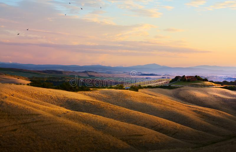 Typisk Tuscany landskap; solnedgång över Rolling Hills och Tuscany royaltyfri fotografi