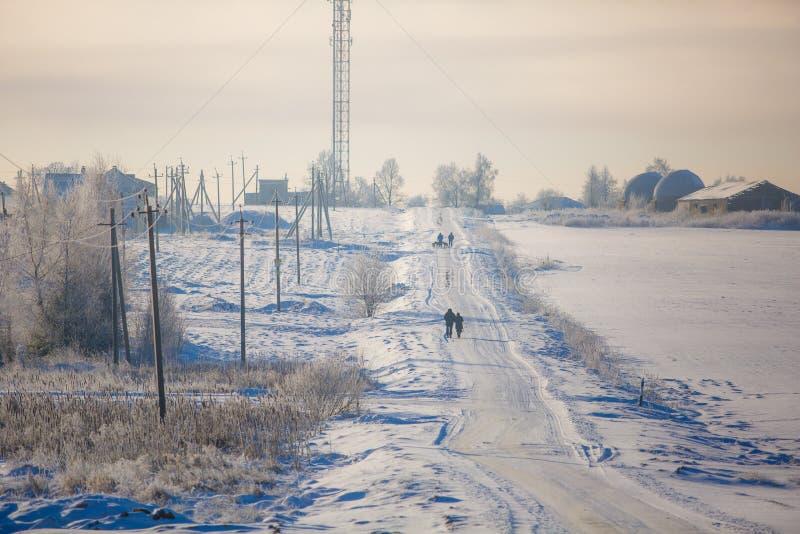 Typisk vinterdag folk som går vidare snöig vägar royaltyfri foto