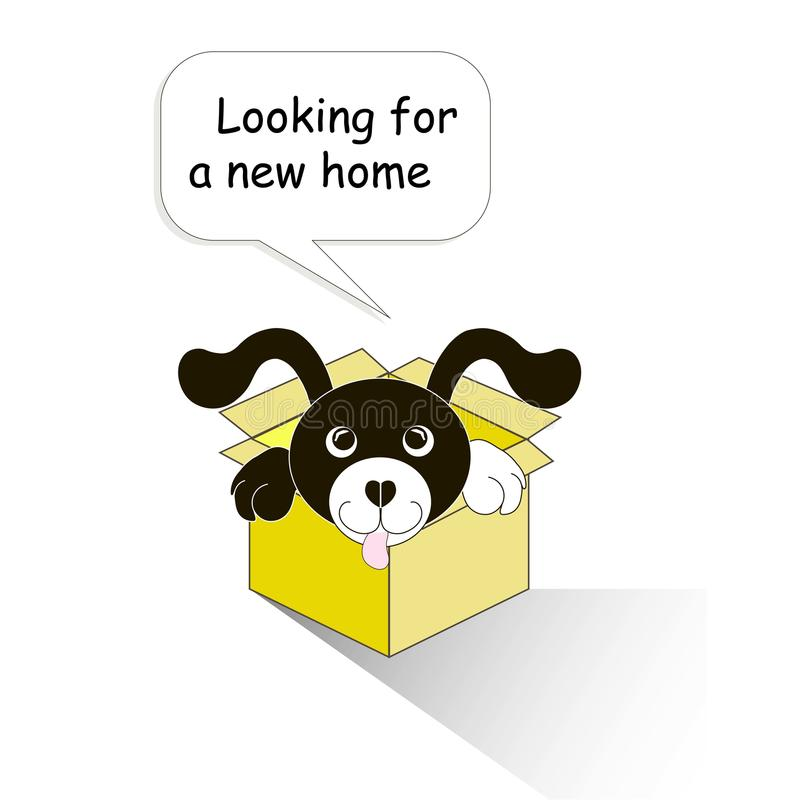 Typography banner Looking for a new home, black and white cartoons dog in the yellow box on white vector illustration