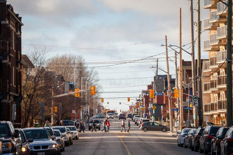 Typowa północnoamerykańska mieszkaniowa ulica w jesieni w Centretown, Ottawa, Ontario, podczas popołudnia z samochodami parkujący zdjęcia royalty free