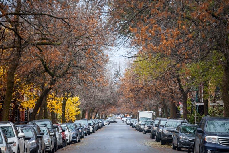 Typowa północnoamerykańska mieszkaniowa ulica w jesieni w Le Plateau, Montreal, Quebec zdjęcie royalty free