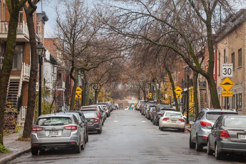 Typowa północnoamerykańska mieszkaniowa ulica w jesieni w Le Plateau, Montreal, Quebec, podczas jesieni popołudnia z samochodami  obraz royalty free