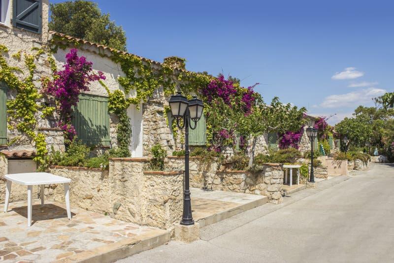 Typowa Provencal aleja, Embiez wyspa, południe Francja zdjęcia royalty free