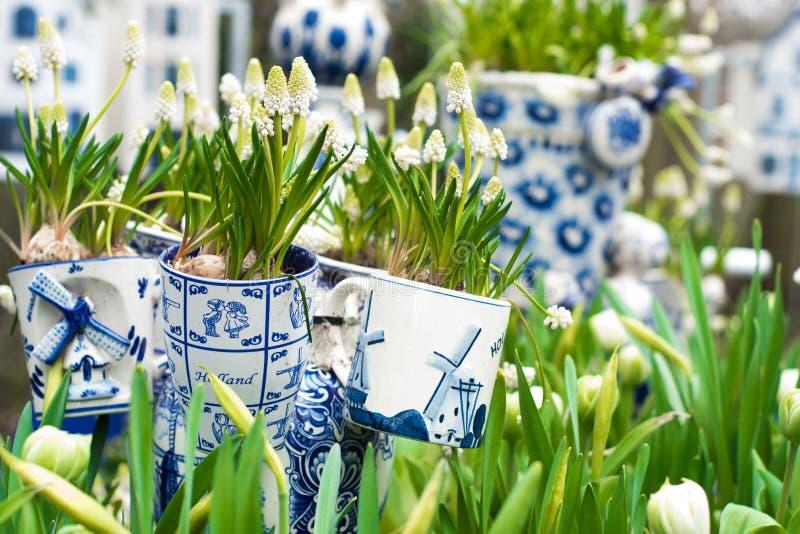 Typowa scena holandie: Holenderscy porcelana kubki z białymi tulipanami i innymi kwiatami w Keukenhof uprawiają ogródek fotografia royalty free