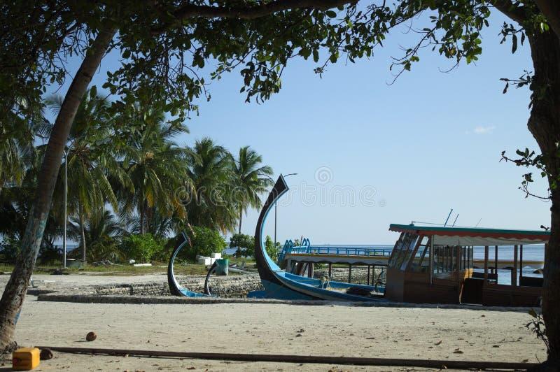 Typowe maldivian łodzie dzwonili «Dhoni «w schronieniu z palmy tłem obraz royalty free