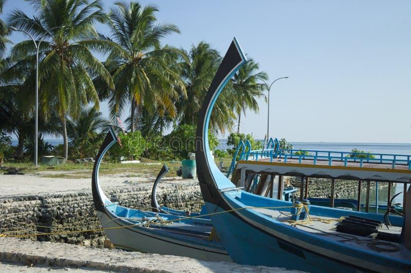 Typowe maldivian łodzie dzwonili «Dhoni «w schronieniu z palmy tłem fotografia stock