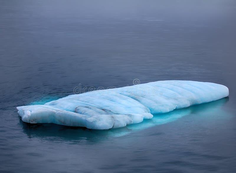 Typowego mruka mała płaska góra lodowa fotografia royalty free