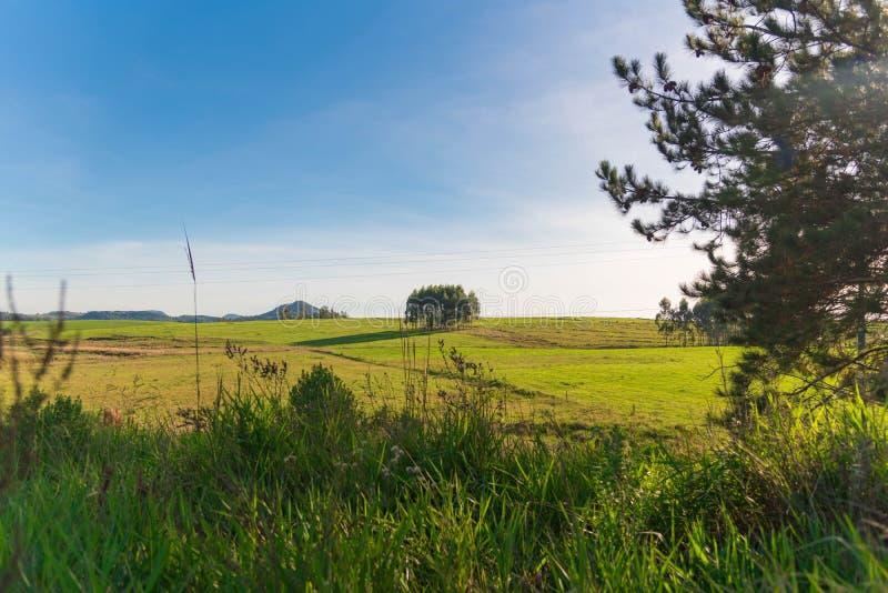 Typowi południe - amerykanina krajobraz obraz stock