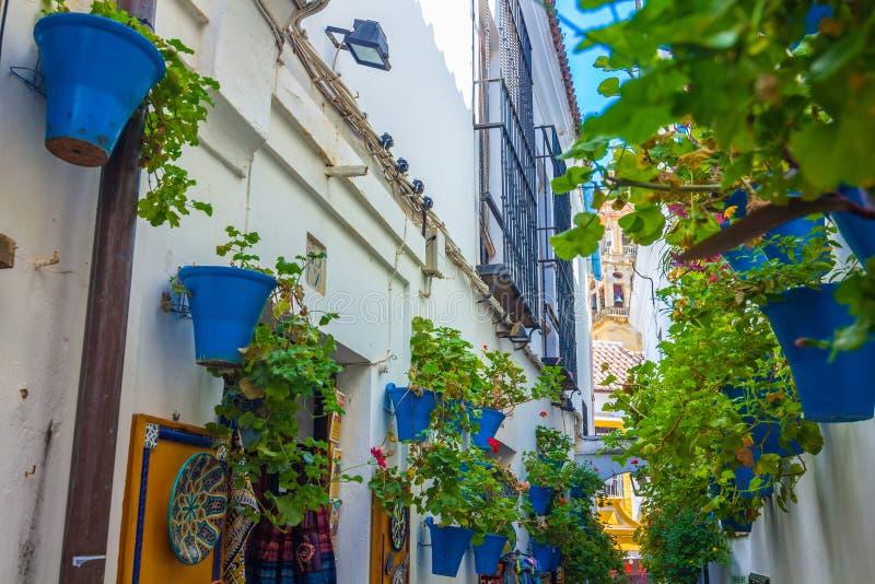 Typowy Andaluzyjski podwórze dekorował z kwiatami w mieście cordoba, Hiszpania fotografia royalty free