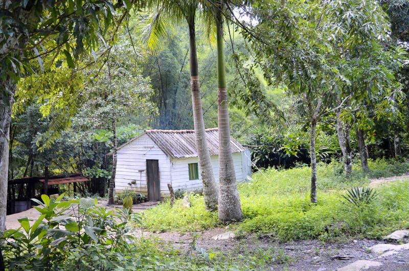 Typowy dom w Lesie Terrazas, Kuba - fotografia stock