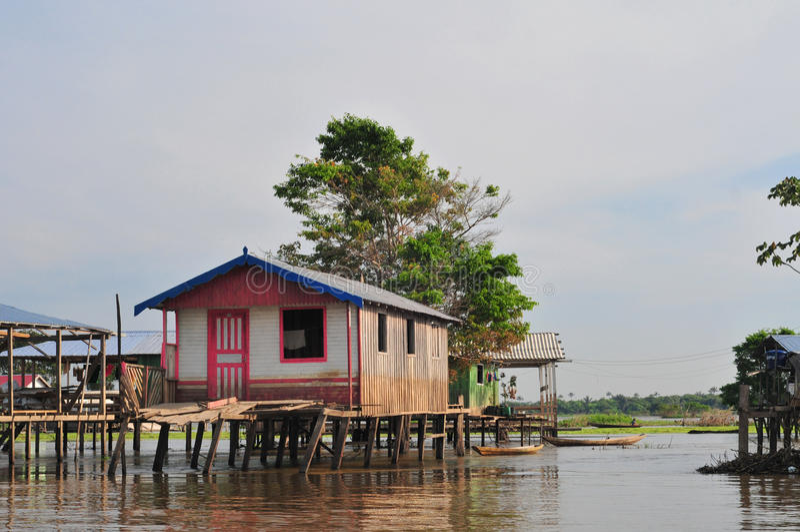 typowy domowy Amazon stilt Amazonia fotografia royalty free