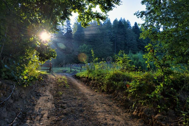 Typowy drewniany ogrodzenie dla baraniego pasania z czystą zieloną trawą zdjęcie stock