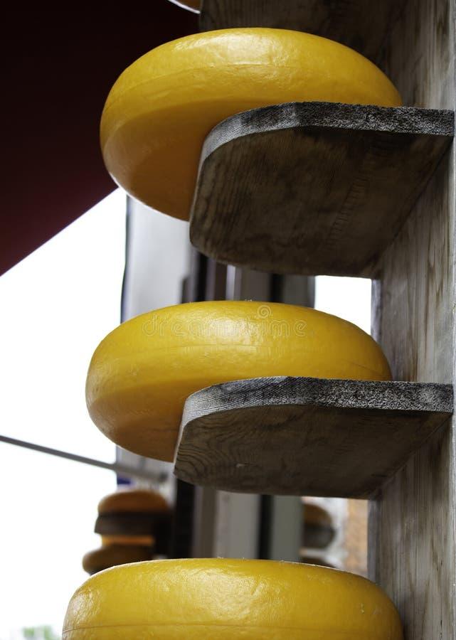 Typowy Holenderski ser zdjęcie royalty free