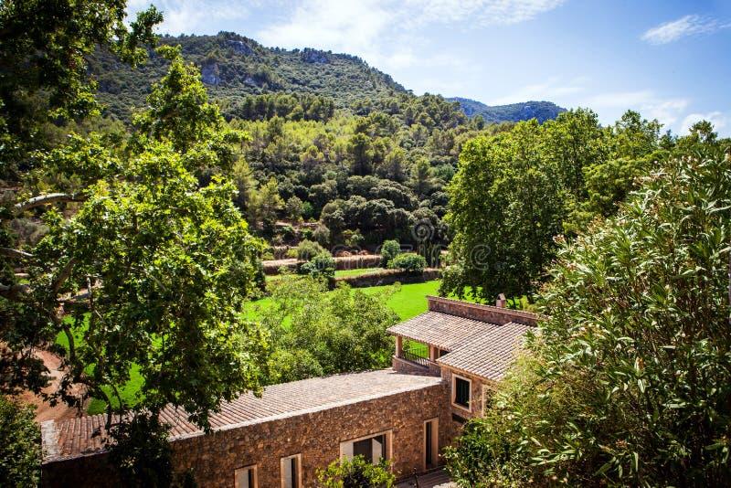 Typowy piękny widok halna dolina na Mallorca wyspie, obraz stock