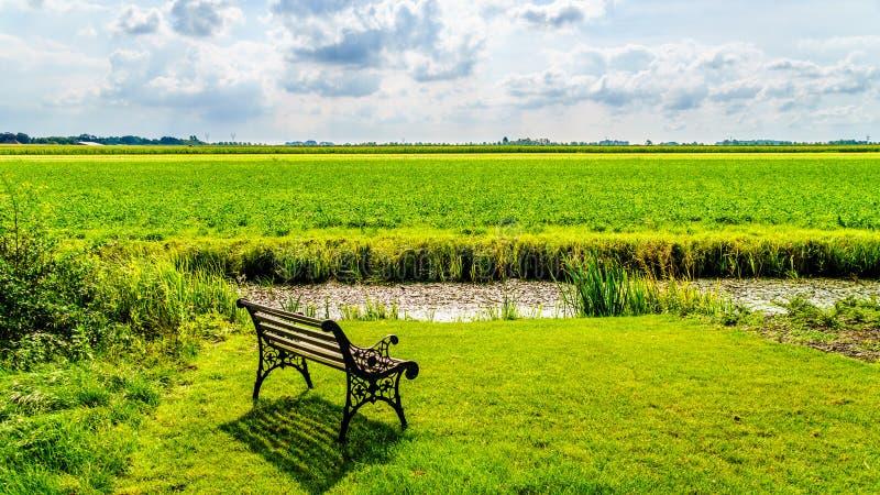 Typowy polderu krajobraz przy historyczną wioską Midden Beemster w Beemster polderze zdjęcia stock