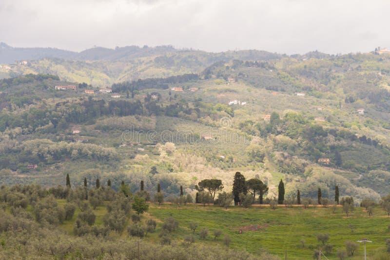 Typowy Tuscany krajobraz z wzgórzami i zieleni drzewami, Włochy zdjęcia stock