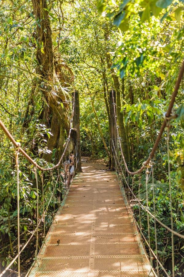 Typowy widok w Costa Rica fotografia royalty free