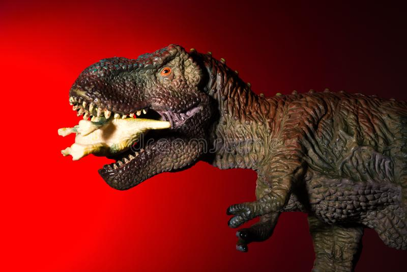 Tyrannosarie som biter en mindre dinosaurie med fläckljus på huvudet och röda ljuset arkivbilder