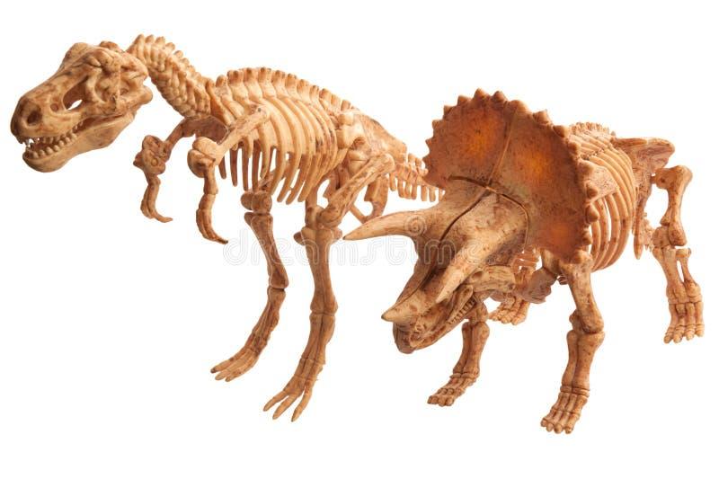 Tyrannosaur и tyrannosaur стоковое изображение