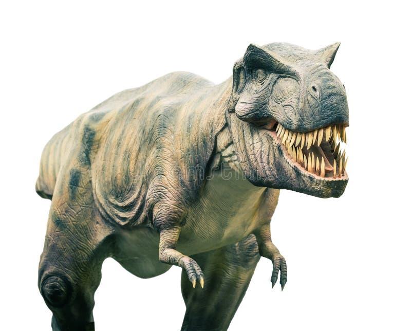 Tyrannosaure éteint antique de dinosaure images libres de droits