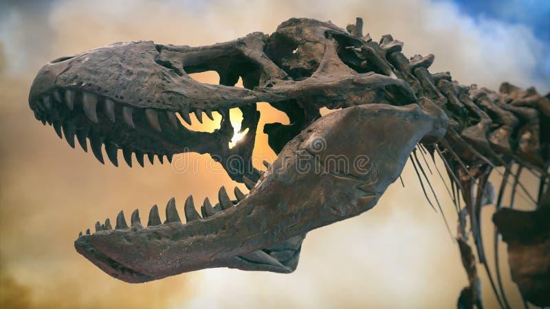 Tyrannosaure Rex Dinosaur Fossil Smoke images libres de droits