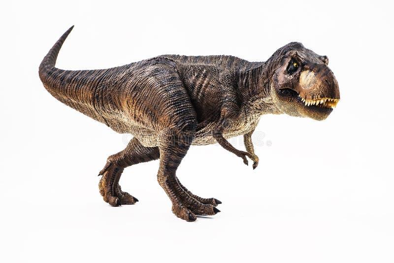 Tyrannosaure T-rex, dinosaure sur le fond blanc photo libre de droits