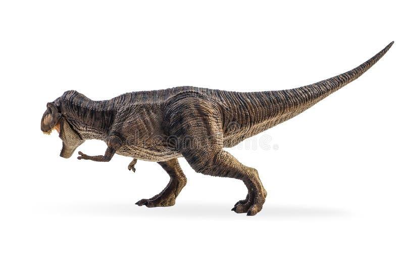 Tyrannosaure T-rex, dinosaure sur le fond blanc photo stock