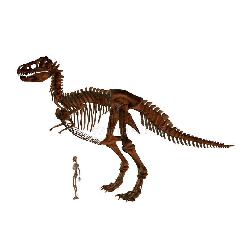 Tyrannosaurus illustration libre de droits