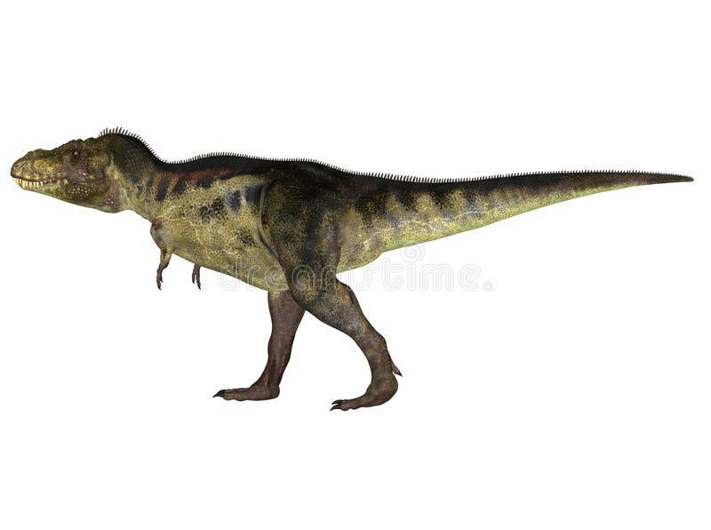 Download Tyrannosaurus stock illustration. Image of deadly, period - 25276527