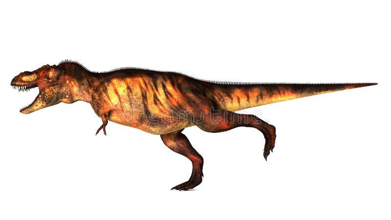 tyrannosaurus ilustracji