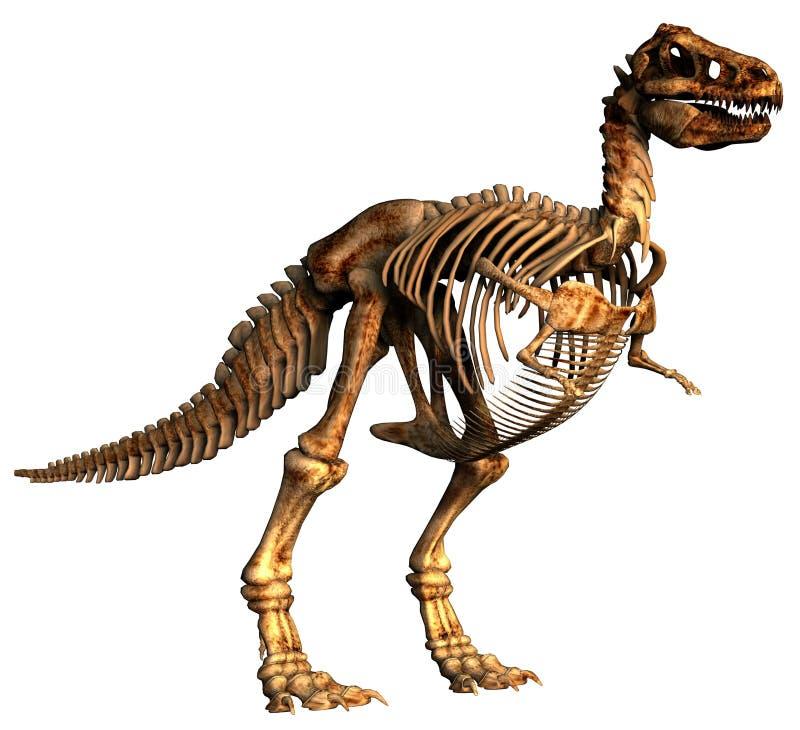 tyrannosaurus de dinosaur illustration de vecteur