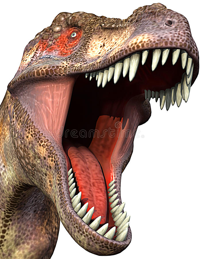 tyrannosaurus för close 2 upp vektor illustrationer