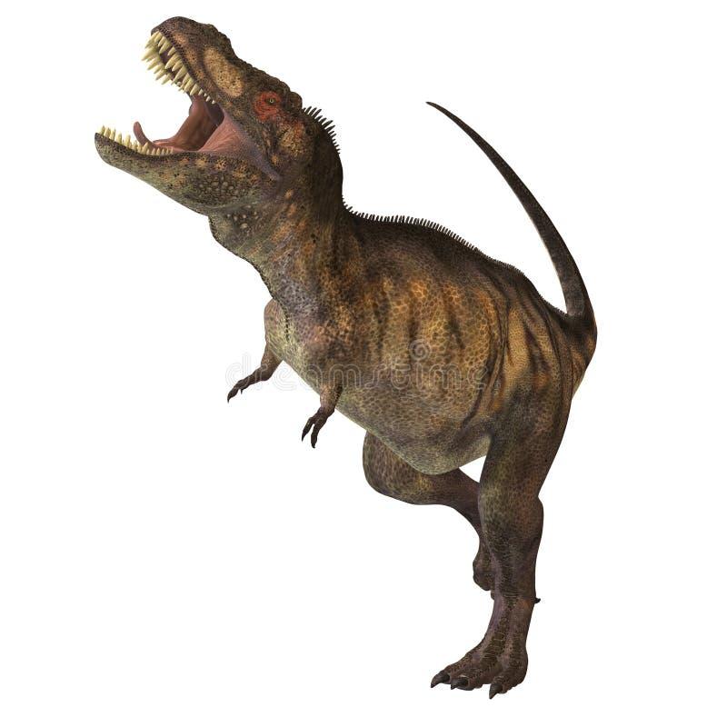Tyrannosaurus Rex 02 illustration stock