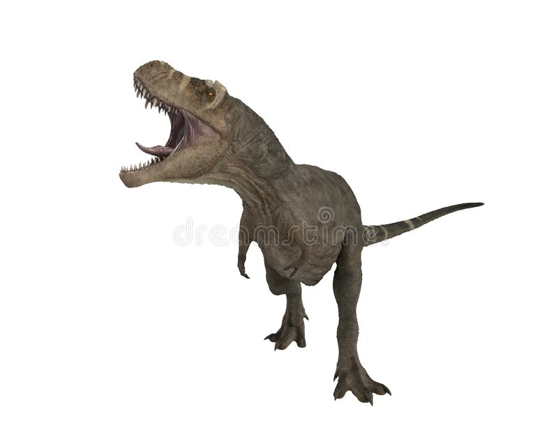 Tyrannosaurus Rex. 3D render of a Tyrannosaurus Rex in aggresive pose with mouth open royalty free illustration