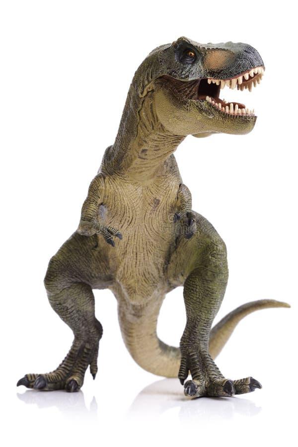 Tyrannosaurus Rex dinosaur. T-Rex dinosaur on white background stock image