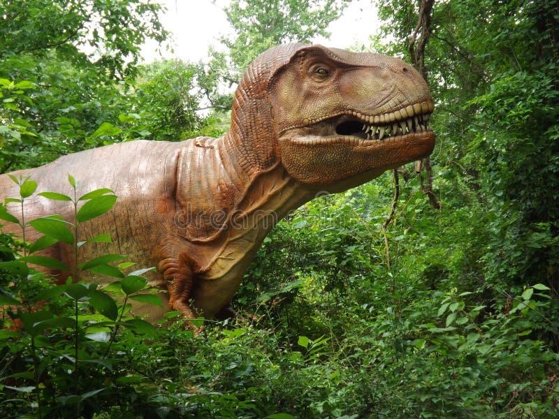 Tyrannosaurus Rex Dinosaur. Dino taken at display in Birmingham Zoo royalty free stock image