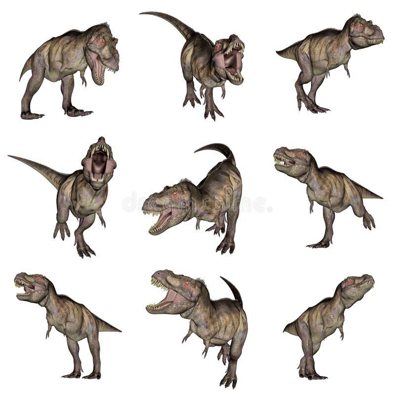 Tyrannosaurus rex dinosaurs - 3D render royalty free illustration
