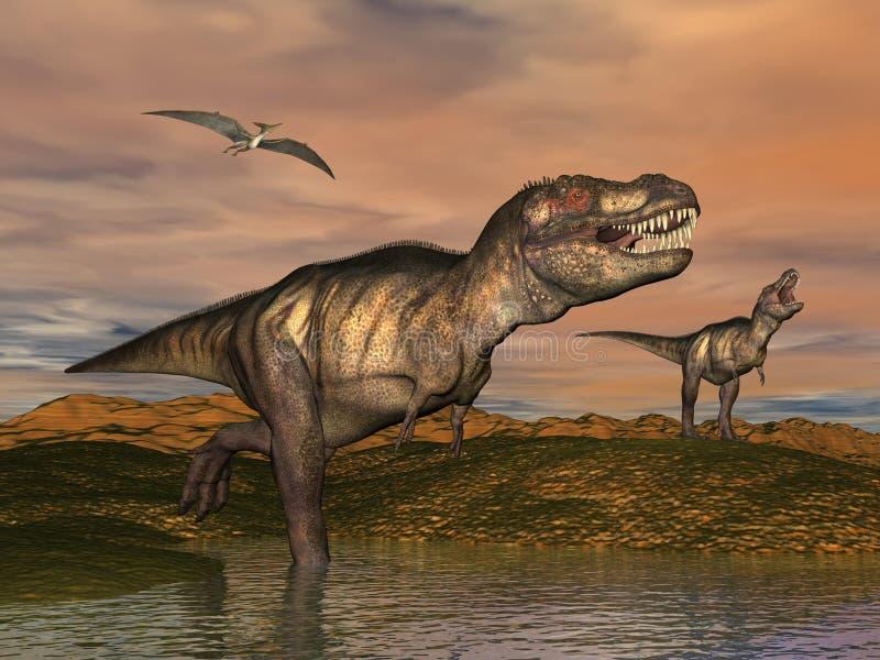 Tyrannosaurus rex dinosaurs - 3D render stock illustration