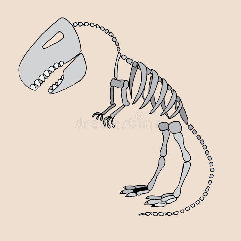 Tyrannosaurus rex Fossil stock abbildung
