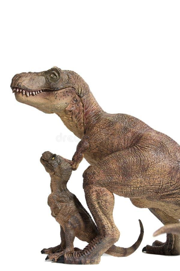 Tyrannosaurus rex met baby t -t-rex op witte achtergrond stock fotografie