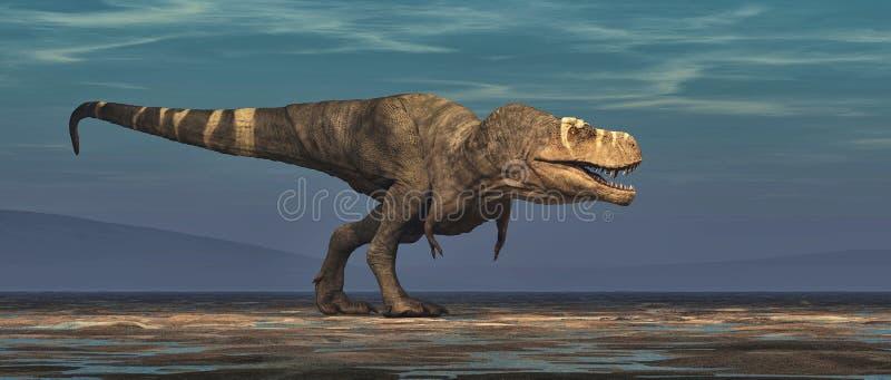 Tyrannosaurus rex na białym tle ilustracja wektor