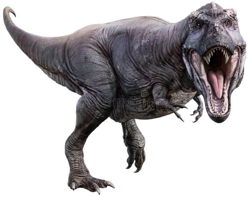 Tyrannosaurus rex roaring 3D illustration stock illustration