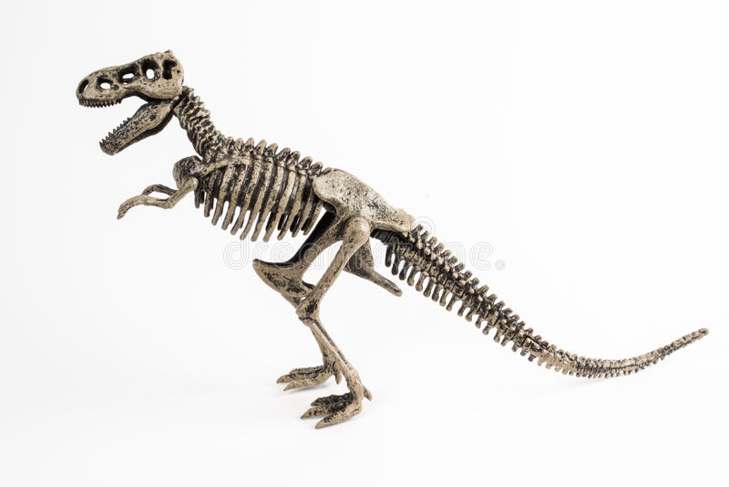T-rex stockfotos