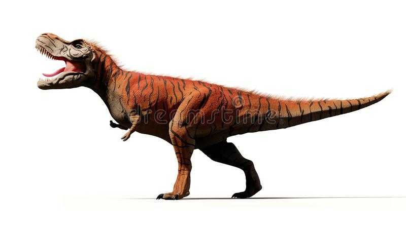 Tyrannosaurus rex, T-rex dinosaur from the Jurassic period 3d render isolated with shadow on white background. Huge predator dinosaur in intense colours stock photography