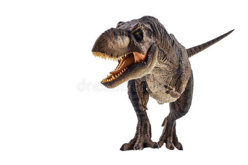 Tyrannosaurus T-rex, dinosaur na bia?ym tle obraz stock